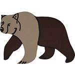 beer dierentuin oerwoud bruine beer ijsbeer brombeer knuffelbeer warme pels bondjas groot wild big 5 feestslinger naamslinger tekstslinger