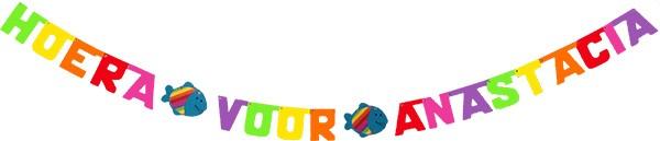 kleuren: lichtgroen - geel - oranje - rood - felroze - paars