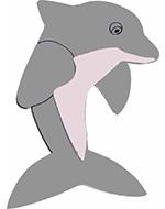 dolfijn vis dolfinarium aquarium zwemdiploma zwemmen afzwemmen diploma A diploma B diploma C tekstslinger naamslinger feestslinger